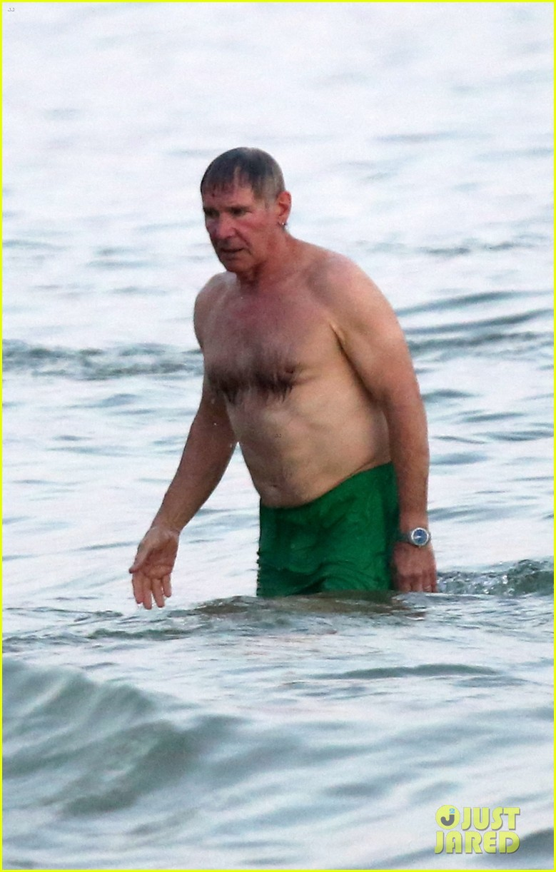 Actor Harrison Ford Naked - He Was a Handsome Cat ...