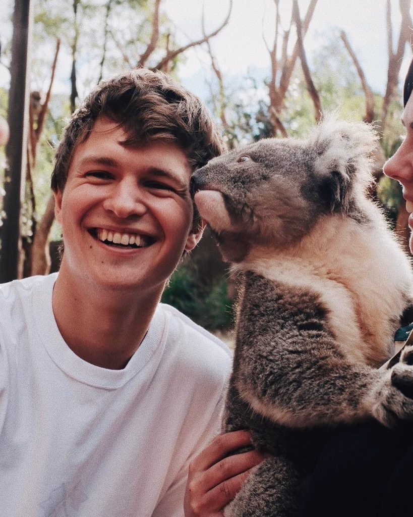 with a Koala bear