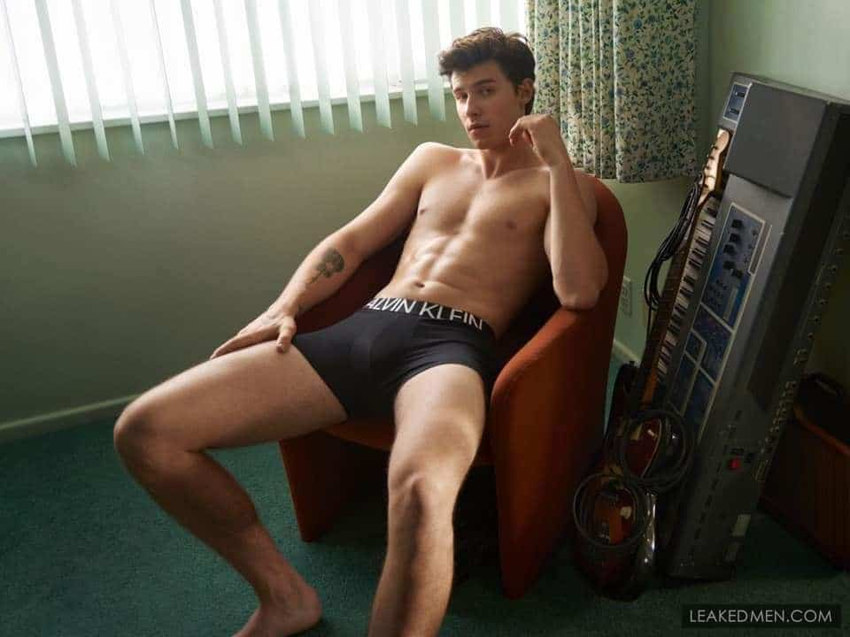 Shawn Mendes stud